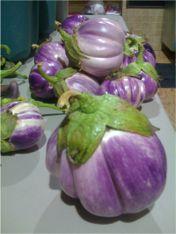 Rosa Blanca Eggplant